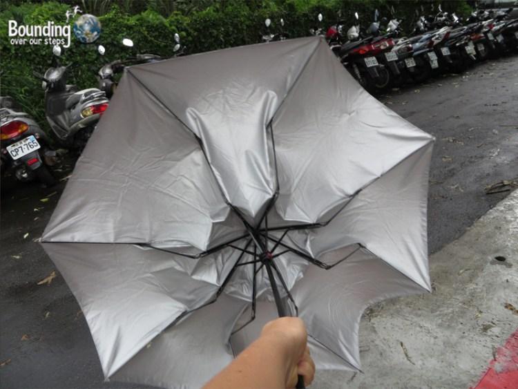 Elephant Mountain - Hiking in Typhoon - Broken Umbrella
