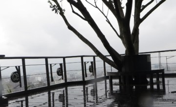 Elephant Mountain - Hiking in Typhoon - Featured