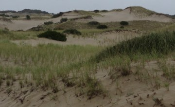 Provincetown Sand Dunes - Featured