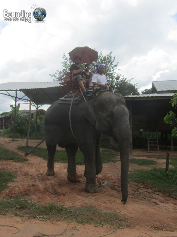 Surin Project - Elephant Ride
