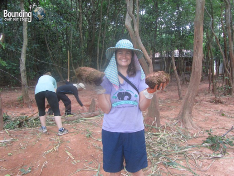 Surin Project - Picking Up Elephant Poo