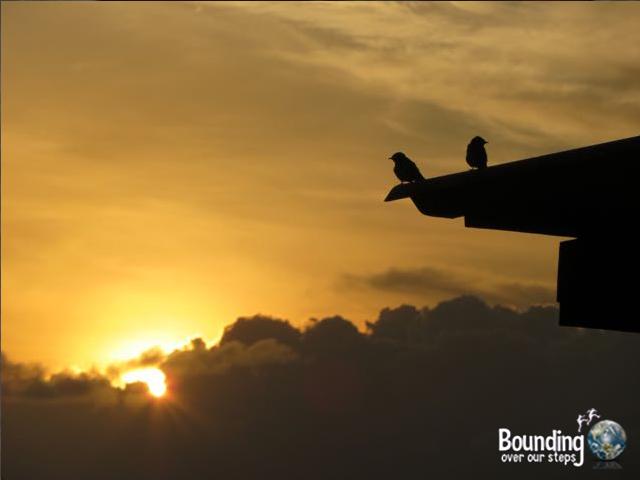 Things to do in Koh Lanta - Birds Sunrise