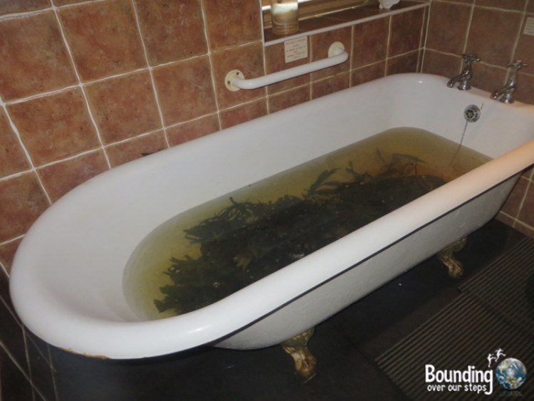 Things to do in Strandhill Ireland - Voya Seaweed Bath
