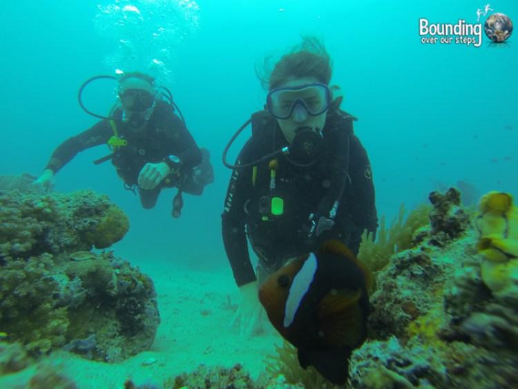 Scuba diving in Puerto Galera, Philippines