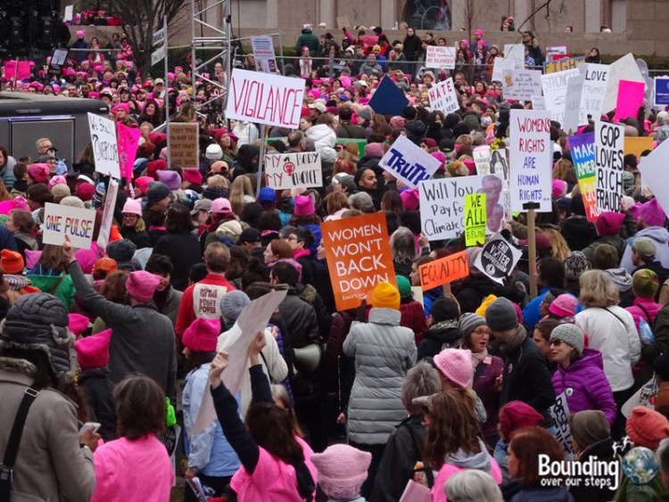 Womens March DC - Sea of Pink Protesters