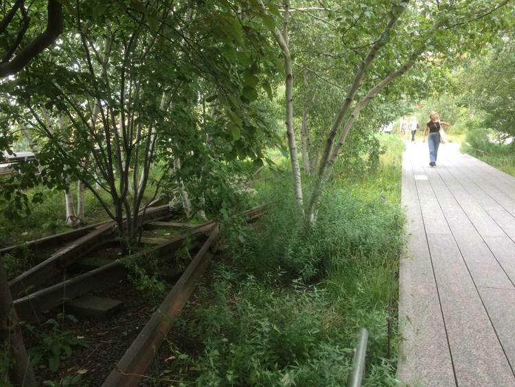 Vegan Weekend in NYC - Strolling Through High Line Park