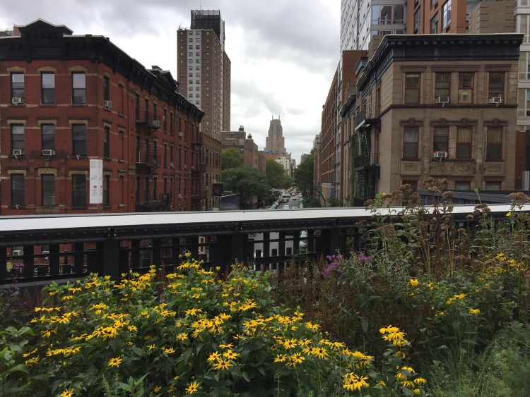 Our Vegan Weekend in NYC - View from High Line Park