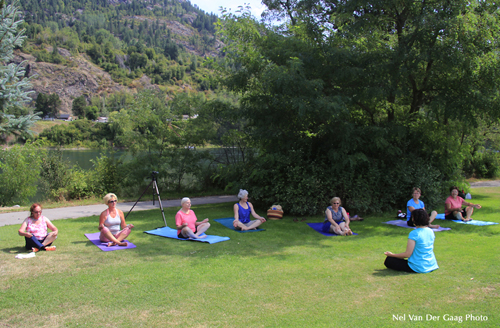 yoga for over 50s, yoga for over 50 beginners, online yoga, yoga for over 50 beginners dvd