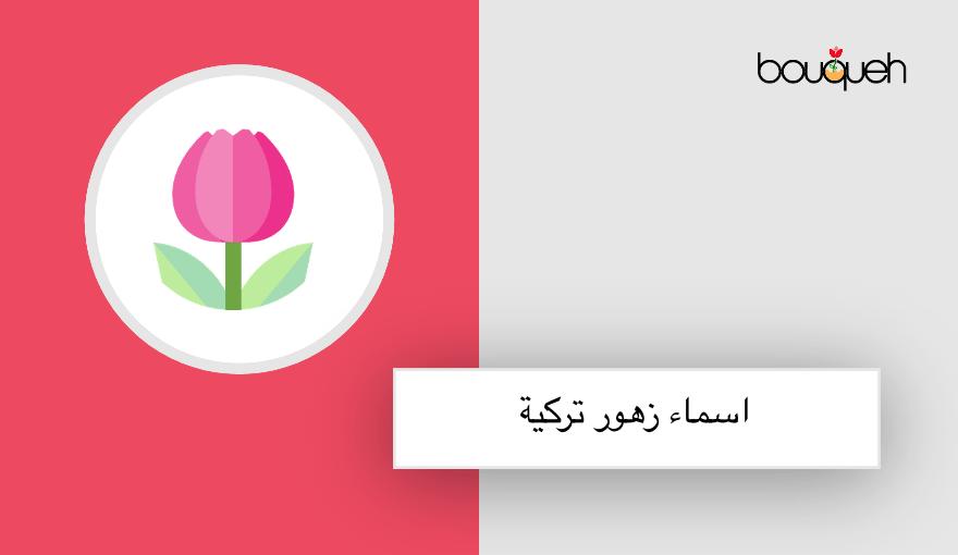 اشهر اسماء الزهور التركية النادرة ومعانيها المختلفة