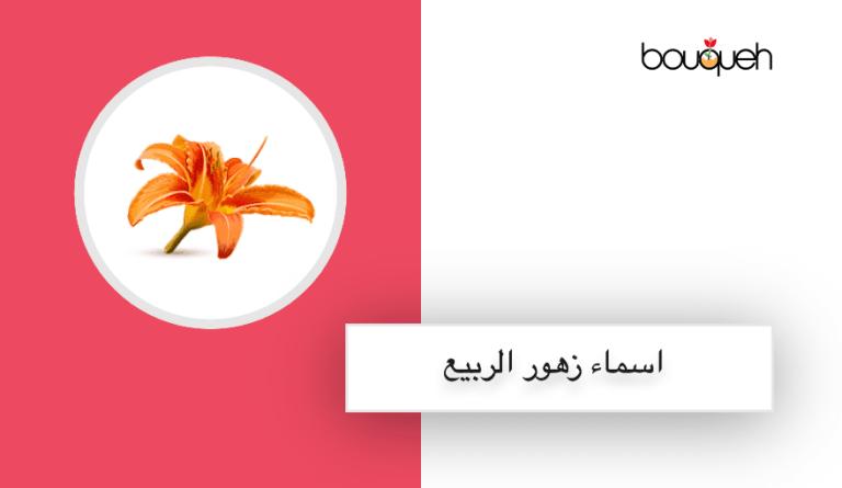اسماء زهور الربيع فى لبنان