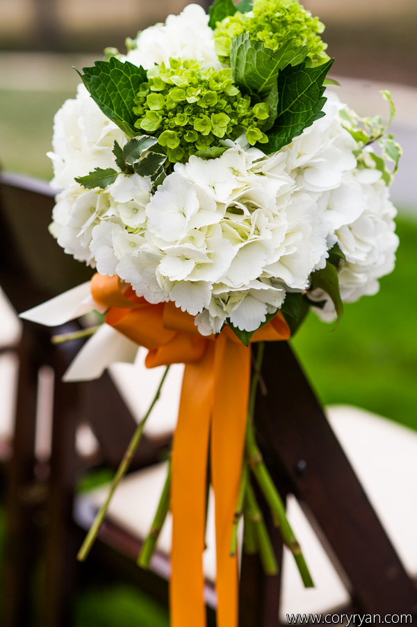 Clusters of hydrangea for the  chairs at the ceremony.