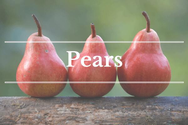 What's in Season: December - Pears | BourbonandHoney.com
