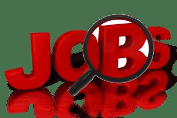 Les Universités anglaise qui garantissent un emploi