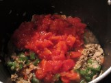Turkey, diced tomatoes, peppers, and onions