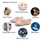 DoGeek Chaussure de Ballet Ballerine Fille Chaussure de Danse Chaussures Pilates Chaussures Yoga Gymnastique Split Plate Ballet Doux Toile Chaussons pour Enfants,Adultes,Filles