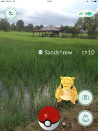 Rice Fields, Pokemon Go in Bangkok and Thailand