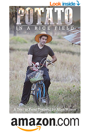 Lifestyle A Potato in a Rice Field eBook by Allan Wilson