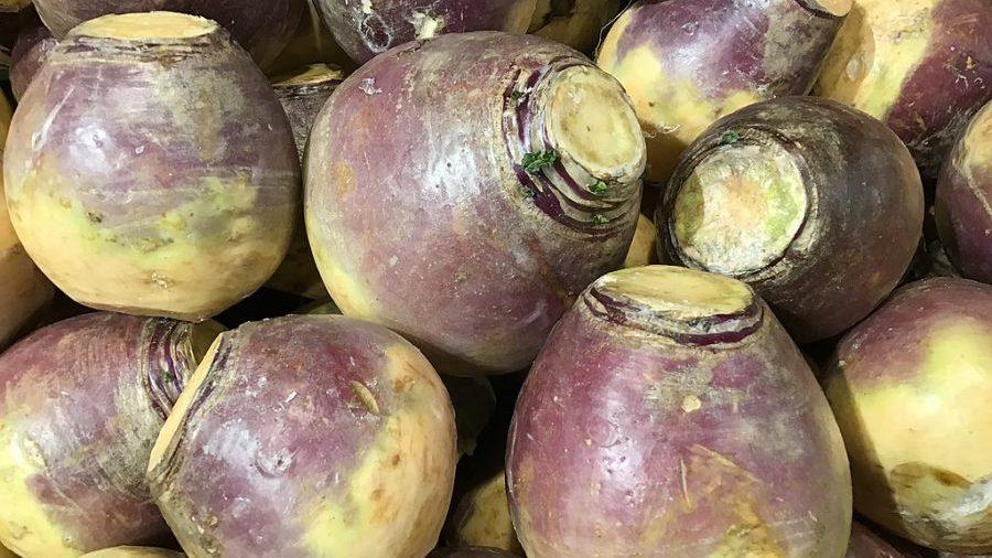 turnip treats
