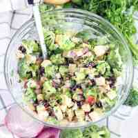 Broccoli Salad (with Apples, Walnuts, and Cranberries)