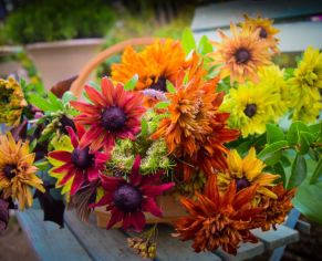 Autumn Posy - Garden Workshop