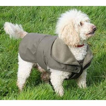Sage Dartmoor Dog Coat