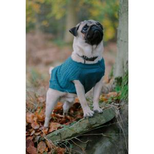 Sotnos teal cable knit jumper for your dog