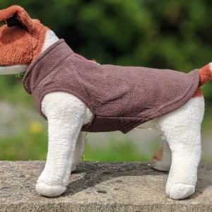 brown dog jumper