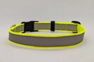 Hi Viz/Reflective Dog Collar