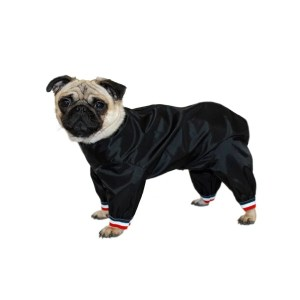 waterproof dog trouser suit