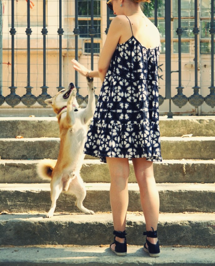 shiba_inu_dog_chien_japonais_robe_dress_summer_style_2016_barcelona_bcn_effected