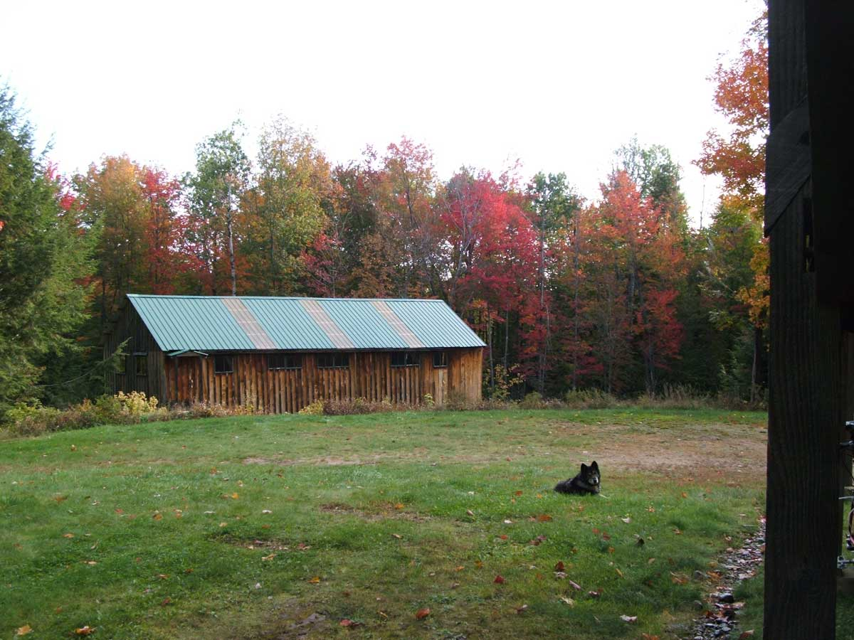 Boat Shed with Autumn colors