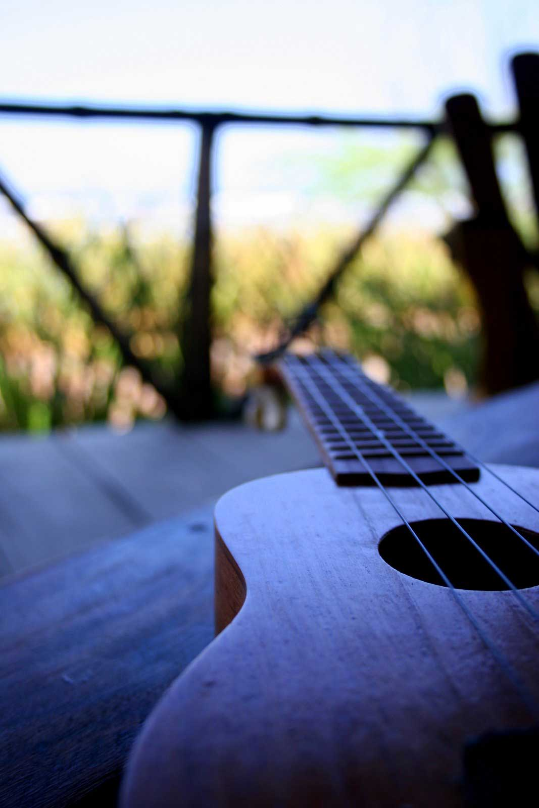 another shot of the kit ukulele