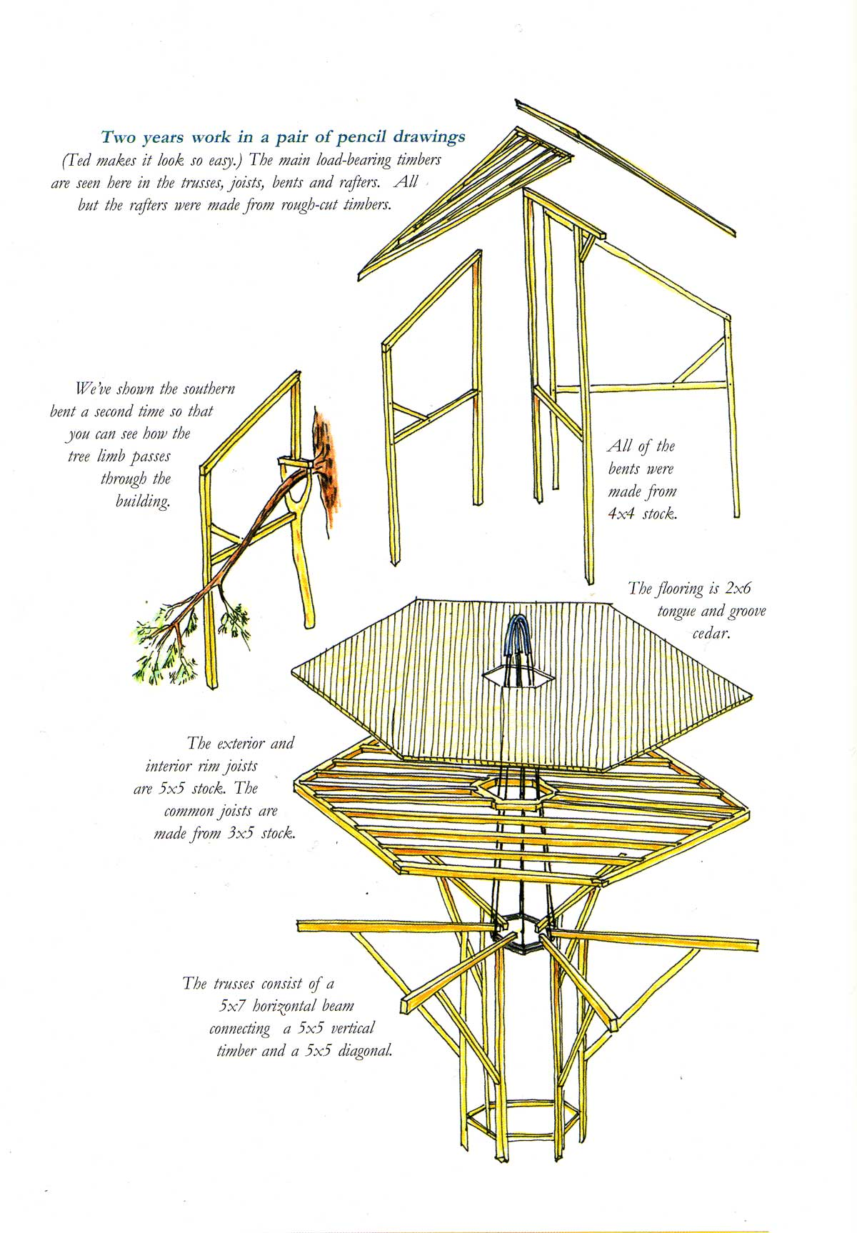 how the tree house is suspended