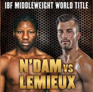 David Lemieux gegen Hassan N'Dam N'Jikam