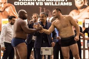 Christian Hammer gegen Sherman Williams