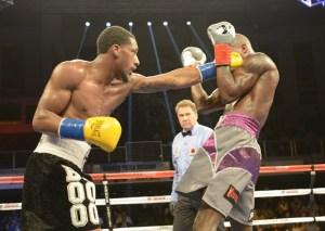 Demetrius Andrade gegen Willie Nelson