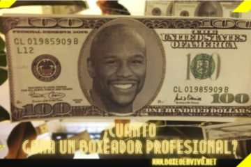 Cuanto Gana un Boxeador Profesional