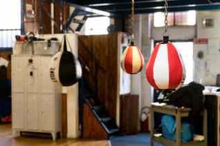 boxe-ursus-f1