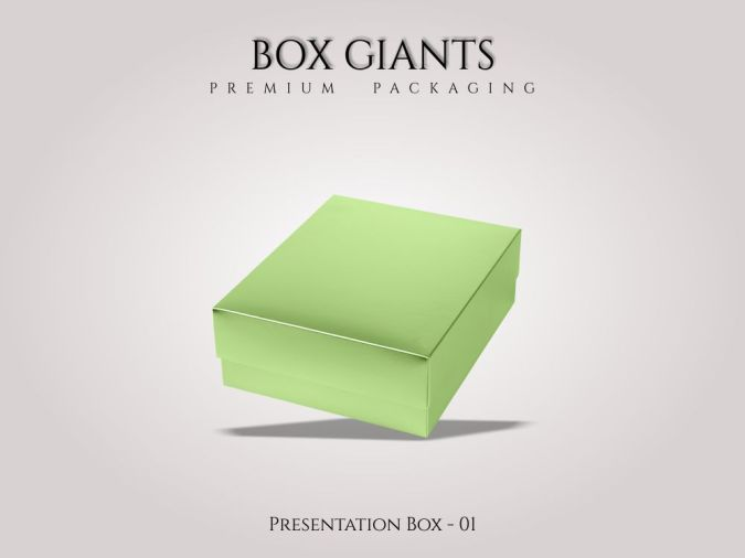 Custom Printed Presentation Boxes