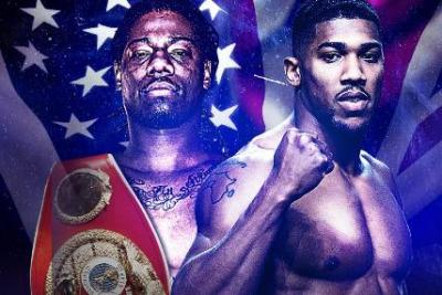 BB's Joshua vs Martin Tale of the Tape, Facts & Stats