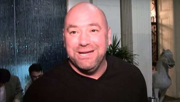 dana white reacts