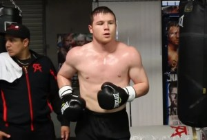 Canelo Strength and Conditioning