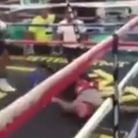 Fight Fans React To This Brutal Mayweather Gym Sparring KO