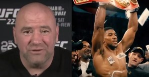 Dana White On What Happened With Joshua and Hearn's Reaction