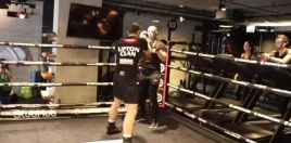 Ted Cheeseman vs Pauly Upton