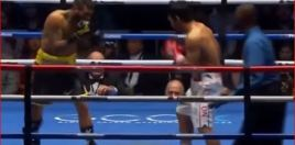 Matthysse Coach Opens Up For The First Time About Pacquiao Loss