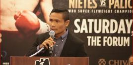 Nietes Promises Great Show