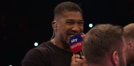 Boxing Fans Saying The Same About An Anthony Joshua vs Tyson Fury 2019 Fight