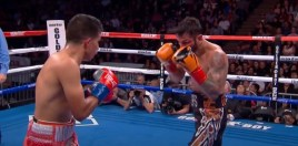 Haney vs Linares, The Classic Young Boxing Lion vs Older Boxing Lion