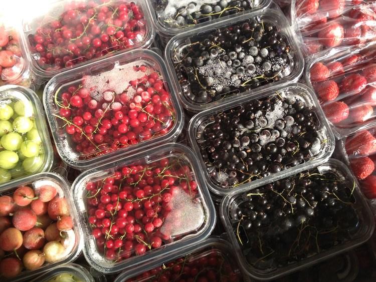 Freshly frozen summer fruit